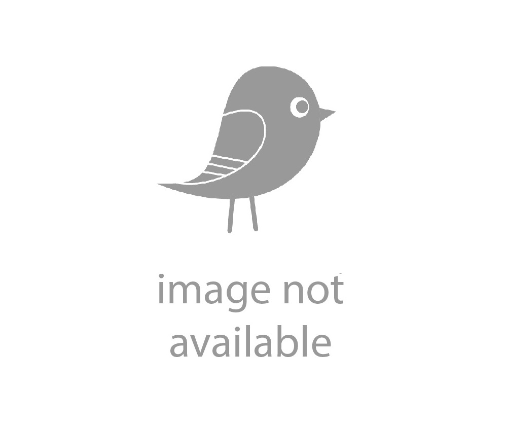König Cast Iron Griddle 8' inches (20 cm.) Pre-Seasoned, Non-Stick & Chemical Free - Ready to ship